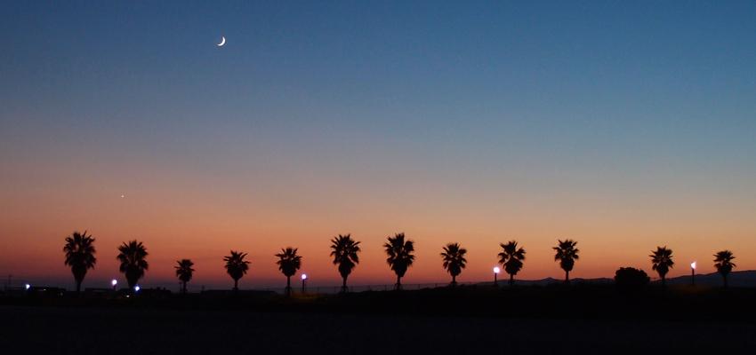 星が綺麗な夜に